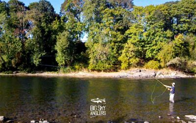 Reach Spey Casts – Aerial Mending with 2 Handed Rods