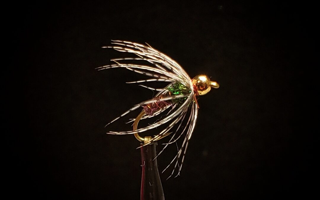 Big Sky Anglers Featured Fly – BH Soft Hackle Pheasant Tail