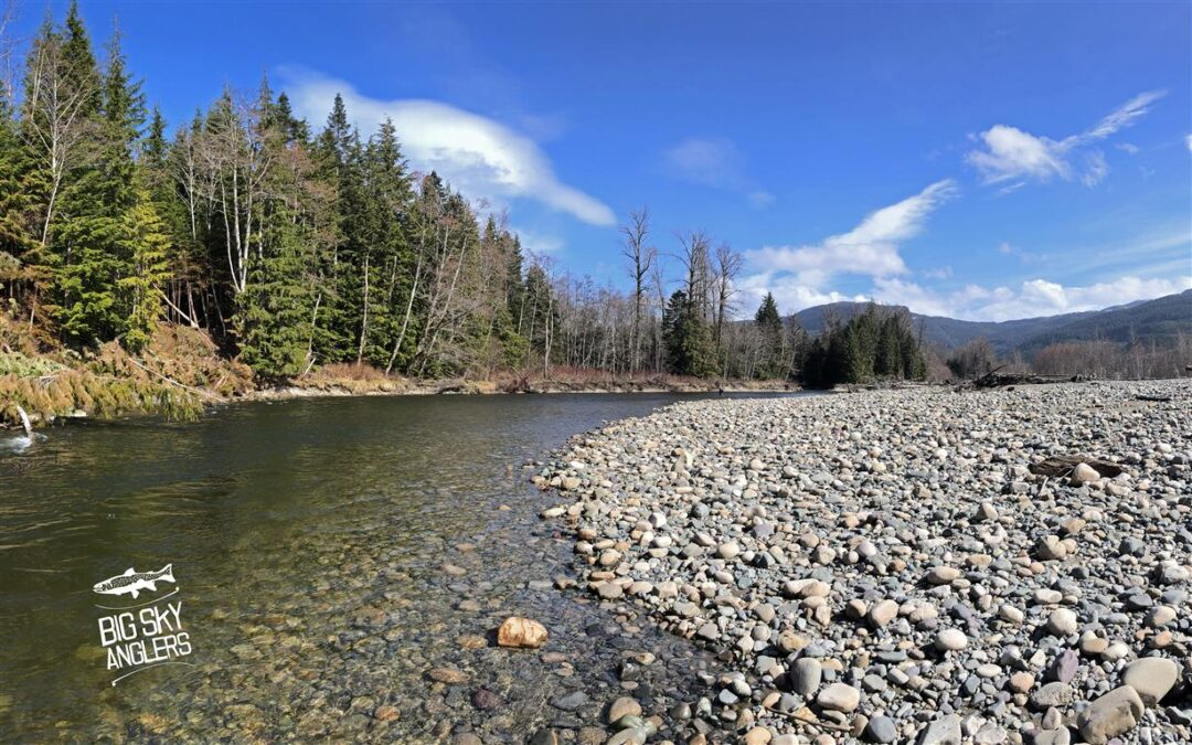 Finding the Rhythm in the Motherland of Steelhead