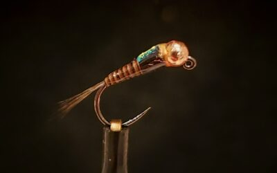 Big Sky Anglers Featured Fly – SR Spanish Bullet Quill Nymph