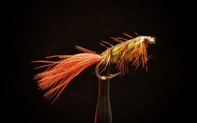 Big Sky Anglers Featured Fly – Rickards' Stillwater Nymph