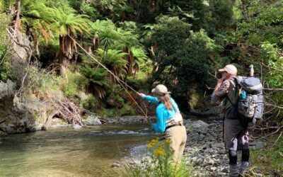 Big Sky Anglers / Category 3 Fly Company – NZ Essentials Fly Selection
