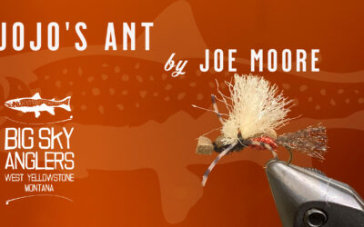 BSA's Best Flying Ant Pattern from Yellowstone Country to Argentina – JoJo's Royal Ant