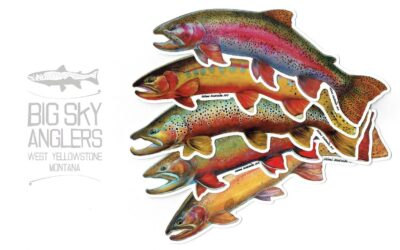 BSA Exclusive – Mimi Matsuda Pine Panel Trout Decals